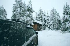 Пришл к лесу зимы стоковая фотография