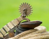 пришпоренная веревочка Стоковая Фотография RF