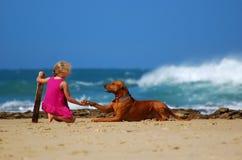 приятельство собаки ребенка