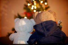 Приятельство плюшевого медвежонка Стоковая Фотография RF