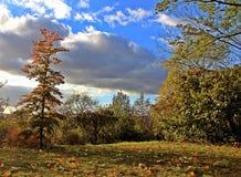 Приятная осень в чехии Стоковое фото RF