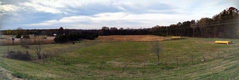 Приятный взгляд поля и неба Стоковые Изображения RF