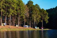Придайте куполообразную форму шатры около озера и сосны в месте для лагеря на угрызении Ung стоковое изображение rf