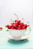 Придайте форму чашки вполне зрелых сладостных вишен на светлой предпосылке, конце вверх Плодоовощи и ягоды лета Стоковая Фотография