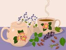 придайте форму чашки чайник Стоковые Изображения