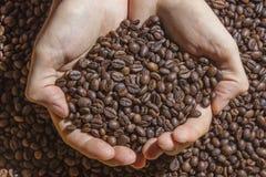 Приданные форму чашки руки держа пригорошню зажаренных в духовке кофейных зерен Стоковое Изображение