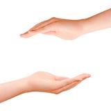 2 приданных форму чашки руки защиты Стоковые Изображения