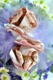 Приданое свадьбы Malay стоковое изображение