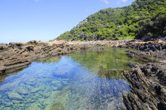 Приливный бассейн вдоль тропы выдры Стоковая Фотография