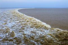 Прилив Qiantang Стоковая Фотография RF