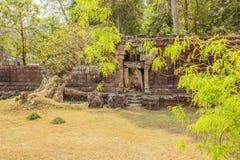 Приложение виска Prohm животиков, Angkor Thom, Siem Reap, Камбоджи стоковое фото rf