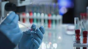 Проба крови техника науки падая для рассмотрения на стеклянной вставке Стоковая Фотография