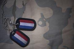 Пробел армии, регистрационный номер собаки с флагом Нидерланд на хаки предпосылке текстуры Стоковое фото RF