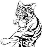 Пробивать характера тигра Стоковое фото RF