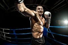 Пробивая боксер на боксерском ринге Стоковые Изображения