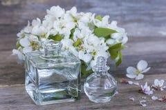 Пробирки с цветками эфирного масла и груши и яблока Стоковая Фотография RF