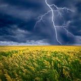 проблескивает молния Стоковое Изображение RF