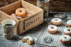 Пробовать сладостные donuts с сахаром порошка Стоковые Изображения