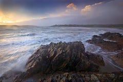 пробочка береговой линии западная Стоковые Изображения