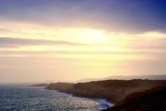пробочка береговой линии западная Стоковая Фотография RF