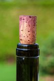 Пробочка бутылки вина Стоковое Изображение RF