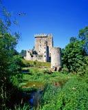 Пробочка замка лести, Ирландия стоковая фотография rf