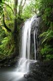 Пробочка Ирландия водопада западная Стоковое Изображение