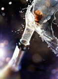пробочка шампанского Стоковая Фотография RF