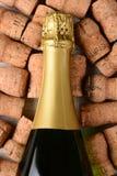 Пробочки бутылки Шампани крупного плана Стоковое фото RF