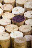Пробочки вина Стоковые Фотографии RF