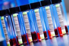Пробы крови Стоковое Изображение RF