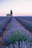 Провансаль, плато Valensole стоковая фотография