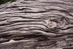 Прованское деревянное зерно Стоковая Фотография RF