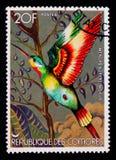 Прованское superciliosus Merops Пчел-едока, serie птиц, около 1978 Стоковая Фотография RF