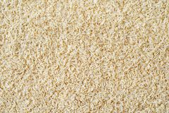 проваренный слегка рис Стоковые Фото