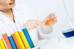 Проверка GMO Стоковые Фотографии RF