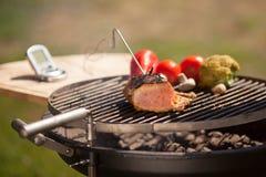 проверять мясо Стоковая Фотография