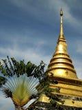 Провинция Nan kam chang prathat Wat Стоковые Изображения RF
