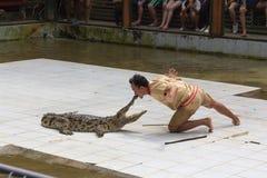 ПРОВИНЦИЯ SURAT THANI, ТАИЛАНД, 12-ОЕ ФЕВРАЛЯ: Выставка крокодила Стоковые Изображения