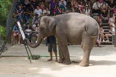 ПРОВИНЦИЯ SURAT THANI, ТАИЛАНД, 12-ОЕ ФЕВРАЛЯ: Выставка a слона Стоковое Изображение