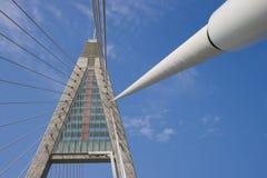 проводы веревочки опоры моста Стоковое Фото