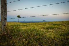 Провод бритвы загородки на земле местности стоковое фото