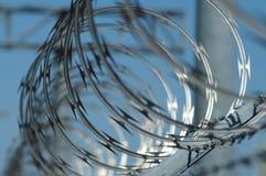Провод бритвы Стоковое фото RF