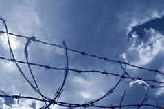 провод голубой бритвы sunlit Стоковые Фото