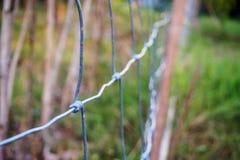 Провод загородки металла Стоковое Фото