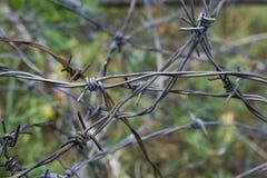 Провод колючки Стоковая Фотография RF