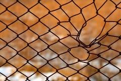 провод плетения Стоковые Фотографии RF
