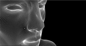 провод рамки детали составленный портретом Стоковые Изображения RF