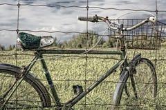 провод сбора винограда велосипеда корзины старый Стоковая Фотография RF