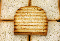 Провозглашанный тост кусок хлеба Стоковое Изображение